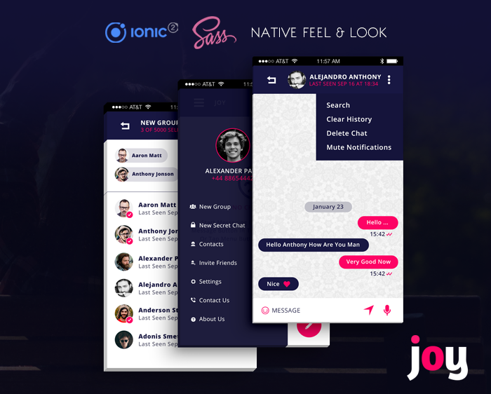 Joy ionic app theme